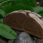maltainen ruisleipä juureen