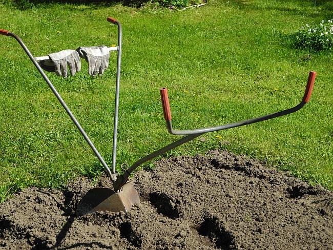 Minä ja puutarha - kymmenen faktaa