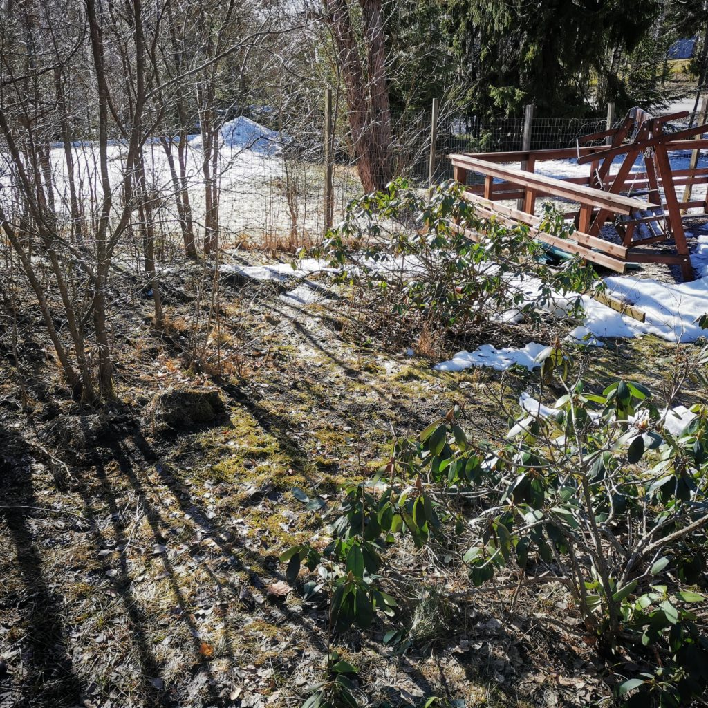 Ansariunelmia ja kevättöitä