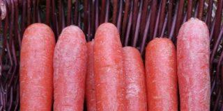 Mummilan porkkanavoi