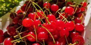 Kirsikoiden säilöntä sokeriliemessä